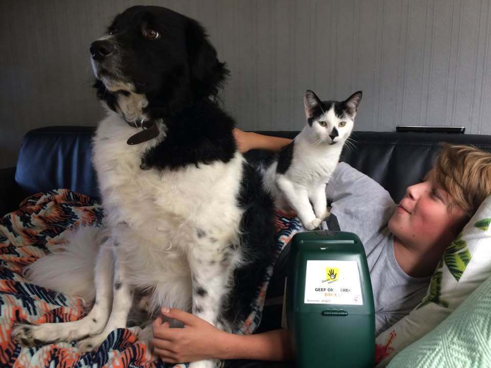collecteren voor dierenbescherming groot