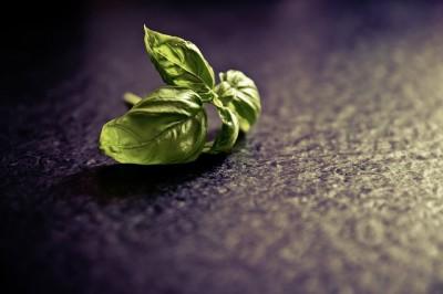 Basilicum smoothie recept
