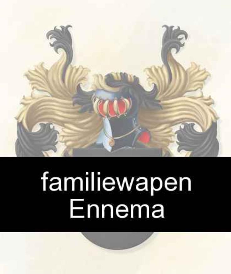 familie-van-dokkumburg-familiewapen-familie-ennema