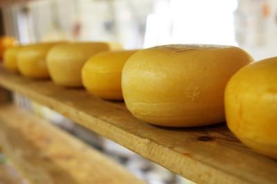 familie van dokkumburg kaas recept plak stukje