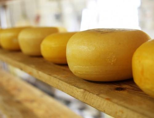 Recept: Kaas met Komkommer