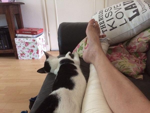 trombose karin bank voetjes op de bank poes relaxen